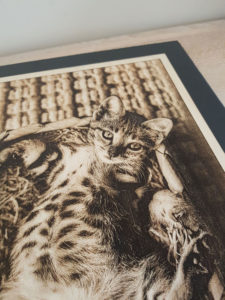 gravure bois laser chat