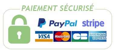 Logo carte paiement paypal stripe